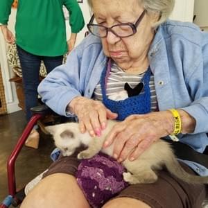 Ms Margaret (104 yr old visitor) with Sky This is what Kitty Heaven is all about!