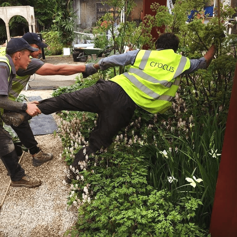Chelsea Flower Show 2019 with Tom Stuart Smith