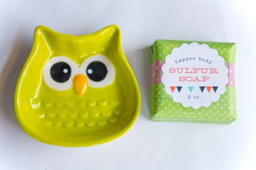 Anti-Acne Sulfur Soap + Lime Owl Soap Dish