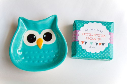 Anti-Acne Sulfur Soap + Teal Owl Soap Dish