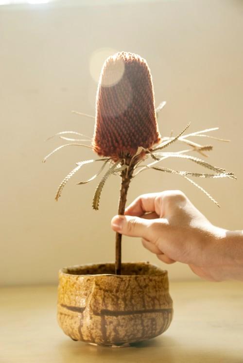 日式茶碗 黃土色