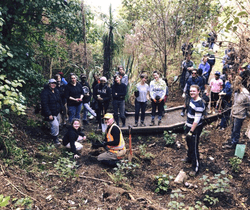 40 ActionStation and Thankyou Payroll volunteers who came together to plant 300 native trees in Pōneke (Wellington)