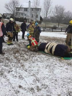 This horse needed the help of the Little Fork Large Animal Technical rescue team.  Dr. Freckleton works collaboratively to get every horse the care he needs.