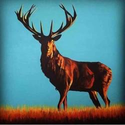 Red Stag - Sold