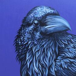 Crow - Original Available - €400