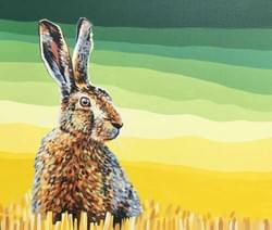 Hare in the Barley - Framed Original Available - €900