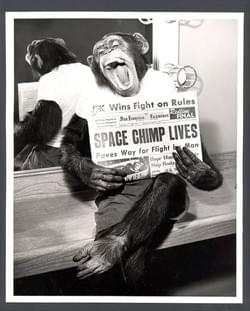 Ham became the first chimpanzee in space on 31 January He reached an altitude of 157 miles and speed of 5857 mph