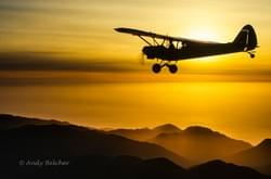 Piper Cub aircraft over Milford Sound. South Island.