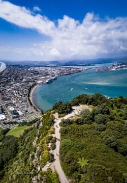 Summit of Mount Maunganui. Cruise ships in Tauranga Harbour.