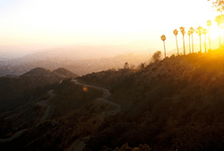 Hollywood Hills Sunset