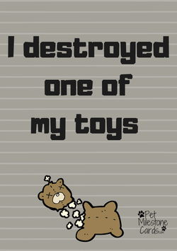 Destroyed-toys-dog-cards