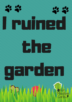 dug-in-garden-naughty-dog-cards
