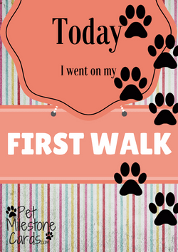 First Walk-puppy-card