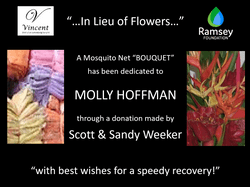 """In Lieu of Flowers"" mosquito net 'bouquet' dedicated to Molly Hoffman via a donation to the Mark & Trina Ramsey Foundation, made by Scott & Sandy Weeker."