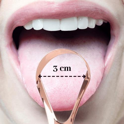 Gratt'langue (sans cuivre)