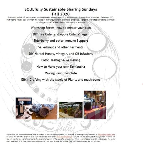 SOULfully Sustainable Sharing Sundays full series