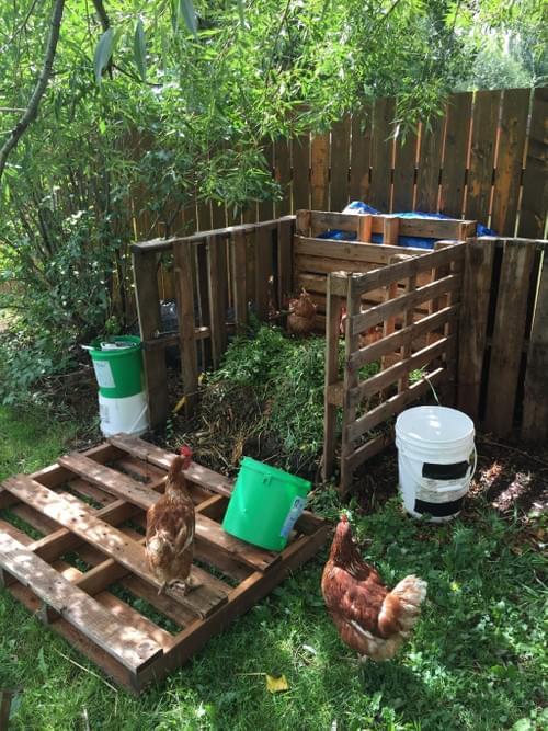 Outdoor Composting Workshop