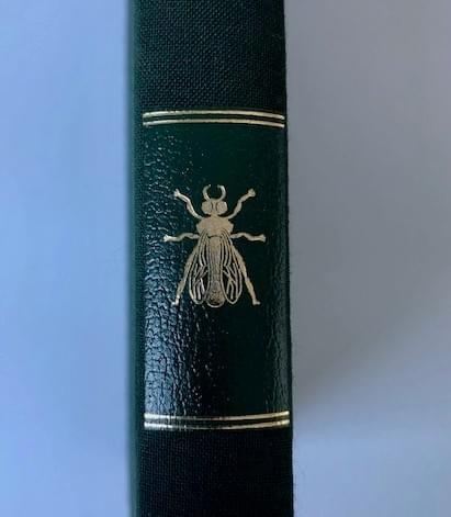 « Moi la Malmaison L'amie intime de Joséphine » par Françoise Deville - Editions de la Bisquine -.