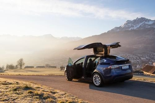 2018 Model X 100D - Elise  - available upon request