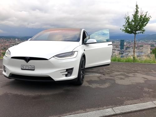 2017 Model X P100D - Tobia - available from September 1st