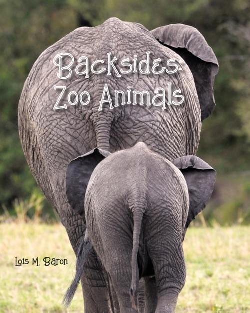Backsides: Zoo Animals