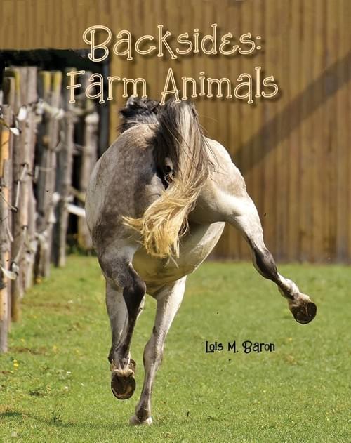 Backsides: Farm Animals