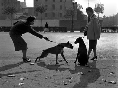 Paseando perros por la Diagonal - Barcelona 1950