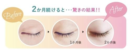 perfect eye essence