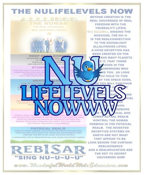NU LifeLevels pdf