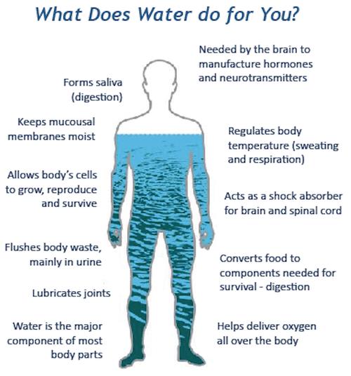 Living Water Machine Electron 5