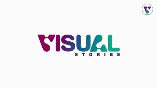 Visual Stories Training
