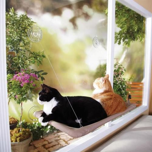 Window Beds and Accessories