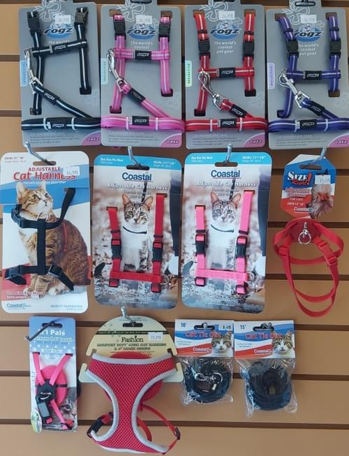 Cat Harnesses and Tie-Outs
