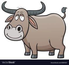 Buffalo Bones and Treats Variety
