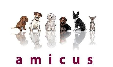 Amicus for small and micro breeds.