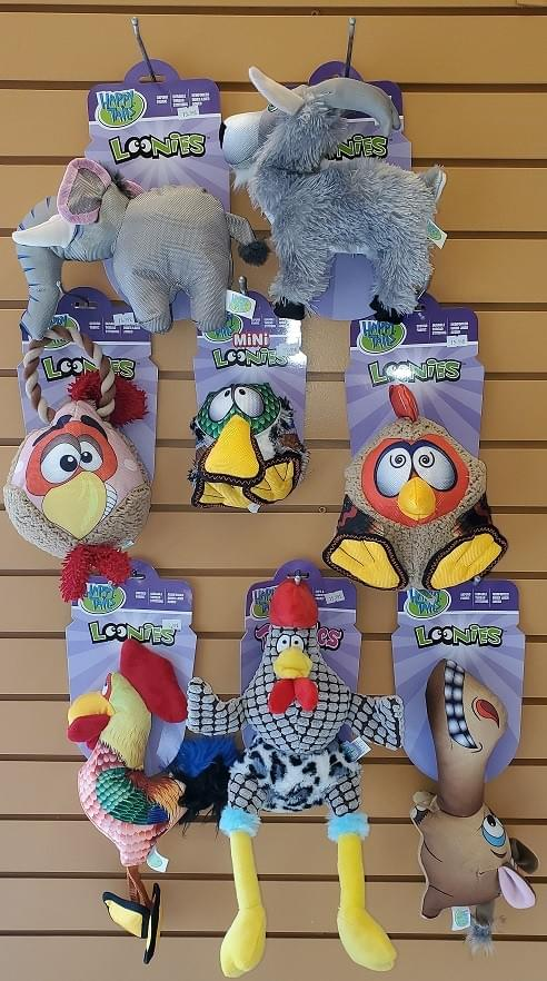 Happy Tails Loonies Durable Assorted Squeak Toys