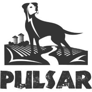 Pulsar Dog Variety