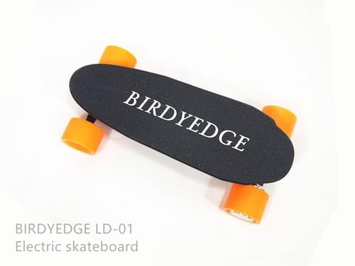 BIRDYEDGE  MINI