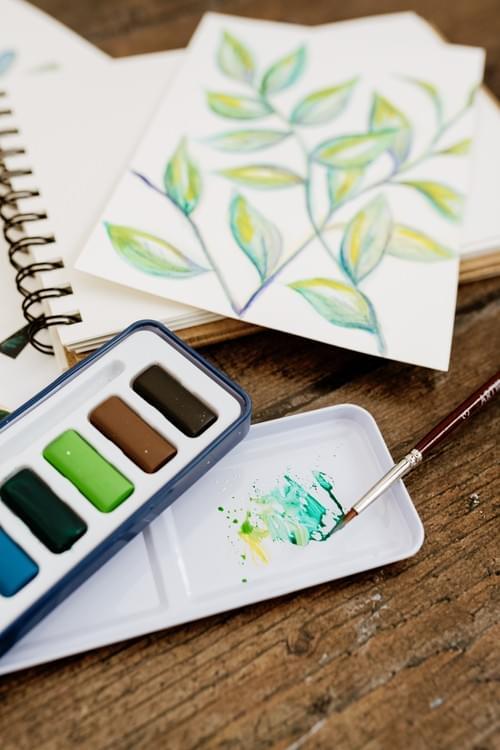 Watercolour Creative Jungle Kit