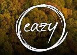 Air Design Eazy 2