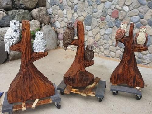 3.5' Owls