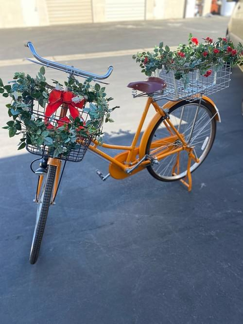 Vintage Flying Pigeon Bicycle with Baskets