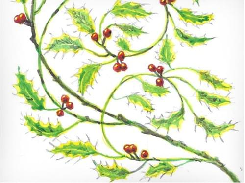 Art Nouveau inspired Holly Motif (Full Guidebook)