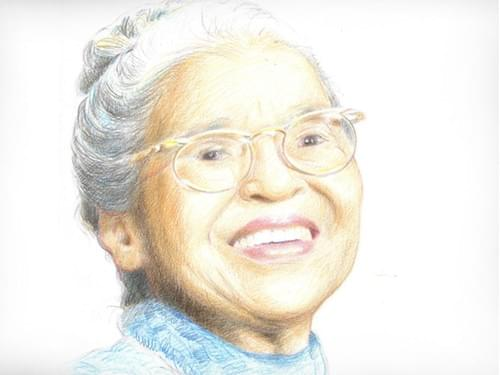 Rosa Parks the Civil Rights Pioneer (Full Guidebook)