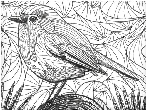 Zentangle inspired Robin (Full Guidebook)