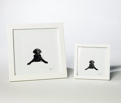 Large / Small Desk Frames