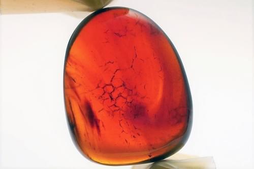 ミャンマーの琥珀「バーマイト」 bur162