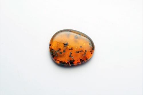 ミャンマーの琥珀(虫入り)「バーマイト」 bur163