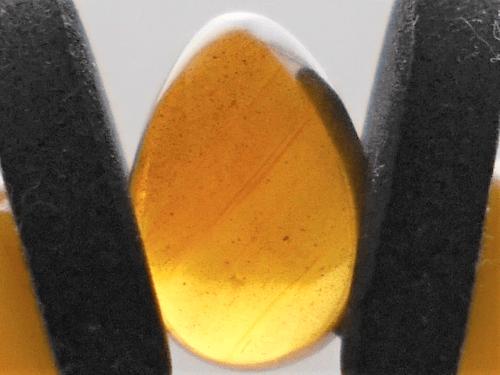 ミャンマーの琥珀「バーマイト」 bur146