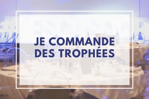 Trophées en Bronze